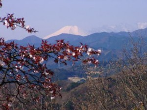 多峰主山から見る富士山
